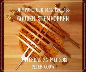 Masterclass Gouden Stemvorken (VOL) @ Praktijk Ohmpunctuur